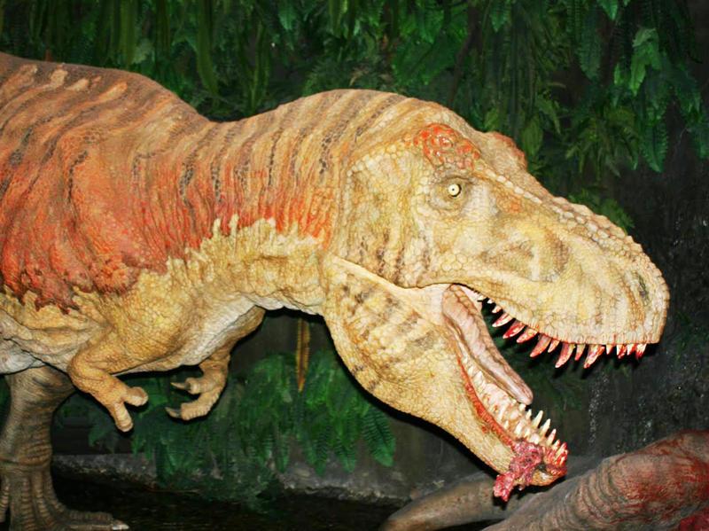 Přírodovědná exkurze do Německa: Od dinosaurů na Mars